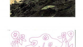 Cartes postales_Alice Baude ©tdr (9)